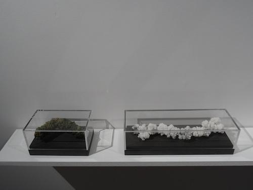 Charlotte Charbonnel, 26 rue du départ, galerie Maubert