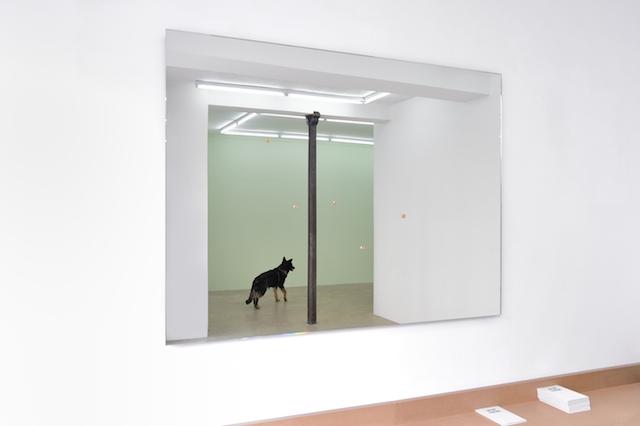 Nicolas Milhé, L'Aménagement du pessimisme ©galerie Samy Abraham