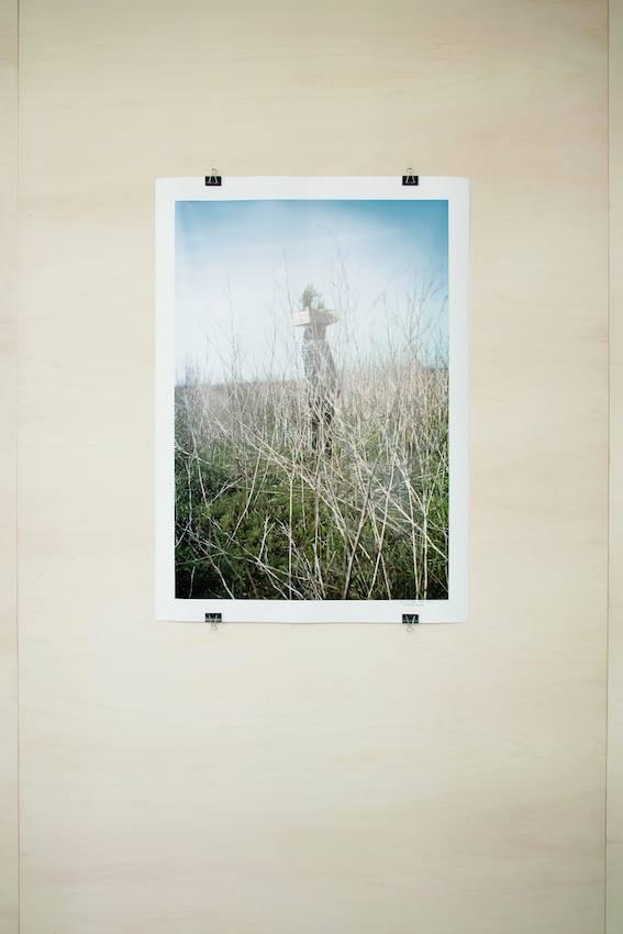 D'une main invisible, D'une main invisible, Lois Weinberger, galerie Salle Principale