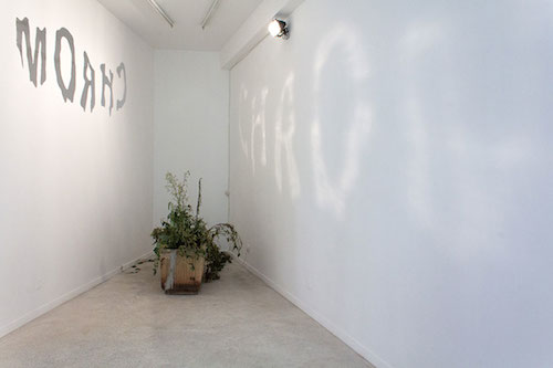 Les Frères Ripoulain, Caustique Chrom, Straat Galerie