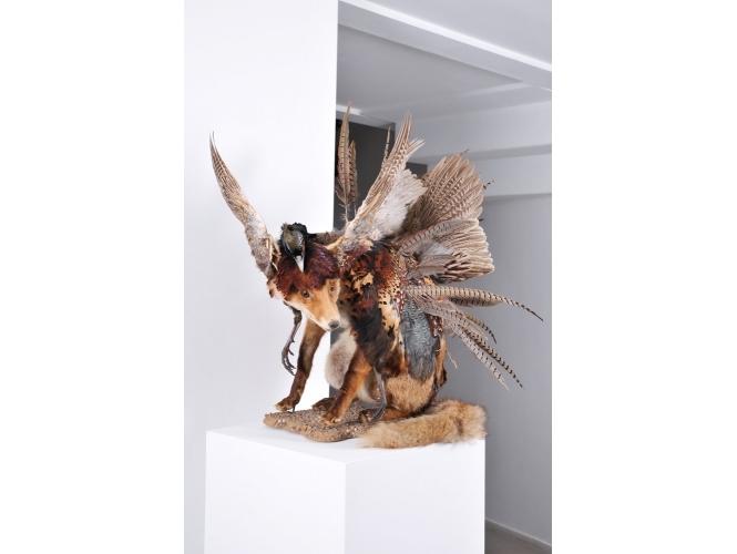 Julien Salaud, Metamorphic, Loft 19 galerie Suzanne Tarasieve