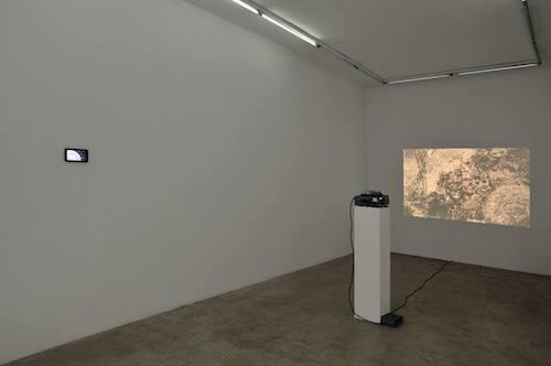 Matthieu Blanchard, Exposition Apoptose, galerie Samy Abraham © Rebecca Fanuele