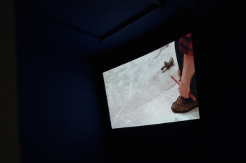 Rebecca Digne, Épure, 2015. Installation Vidéo. Film HD/ 2mn30/ Couleur/ Sonore Œuvre produite avec le soutien de la Fondation Nationale des Arts Graphiques et Plastiques (FNAGP) Édition de 3 + 2 EA. Courtesy of the artist and Galerie Escougnou-Cetraro