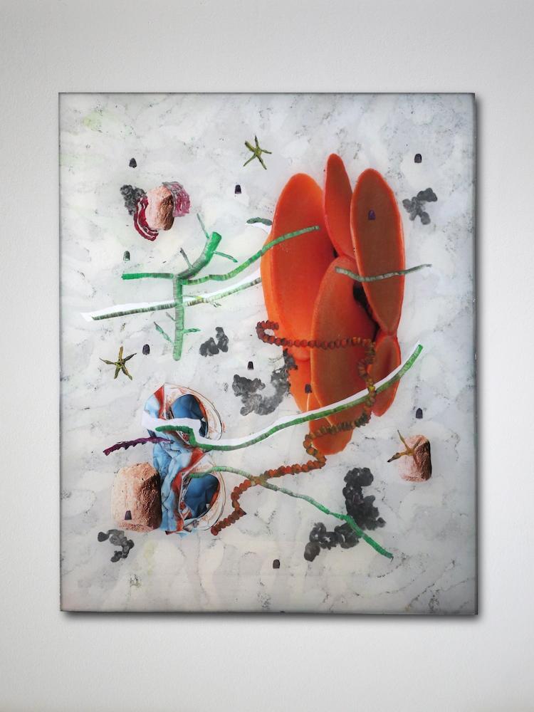[FOCUS] David de Tscharner, Planche