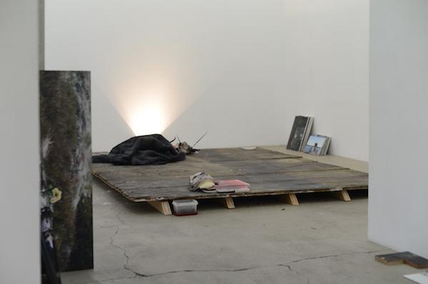 Pétrel I Roumagnac (duo), de rêves, acte I, jardin, 2016 Vue d'exposition, Galerie Escougnou-Cetraro