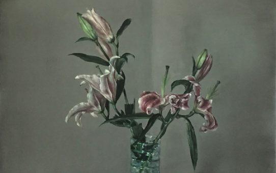 Damien Cadio - Botanique du silence - Galerie Eva Hober