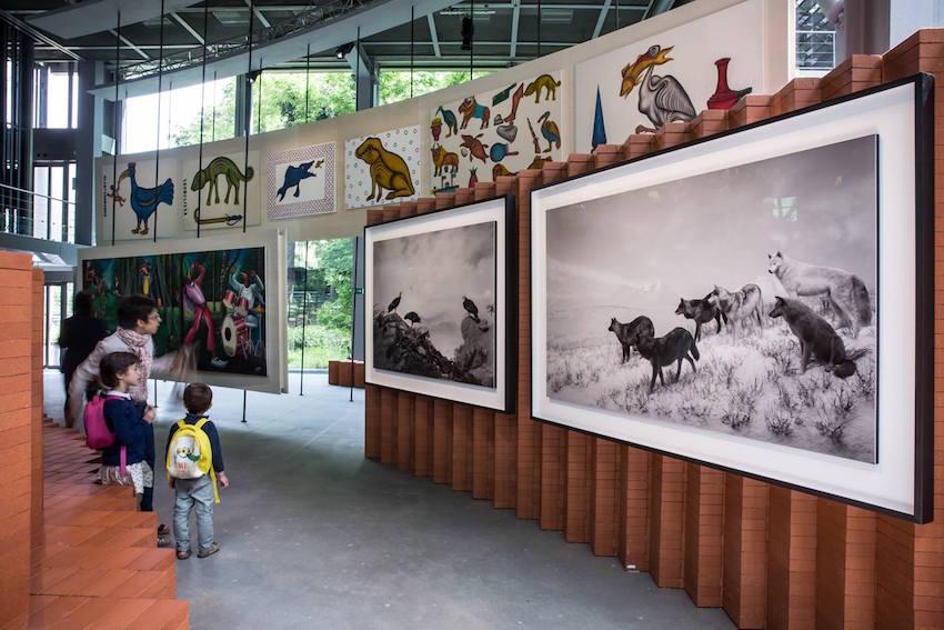 Vue de l'exposition Le Grand Orchestre des Animaux. © Lumento