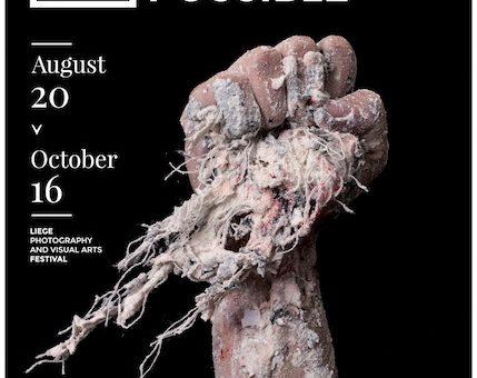 Biennale de l'Image Possible - Liège 2016