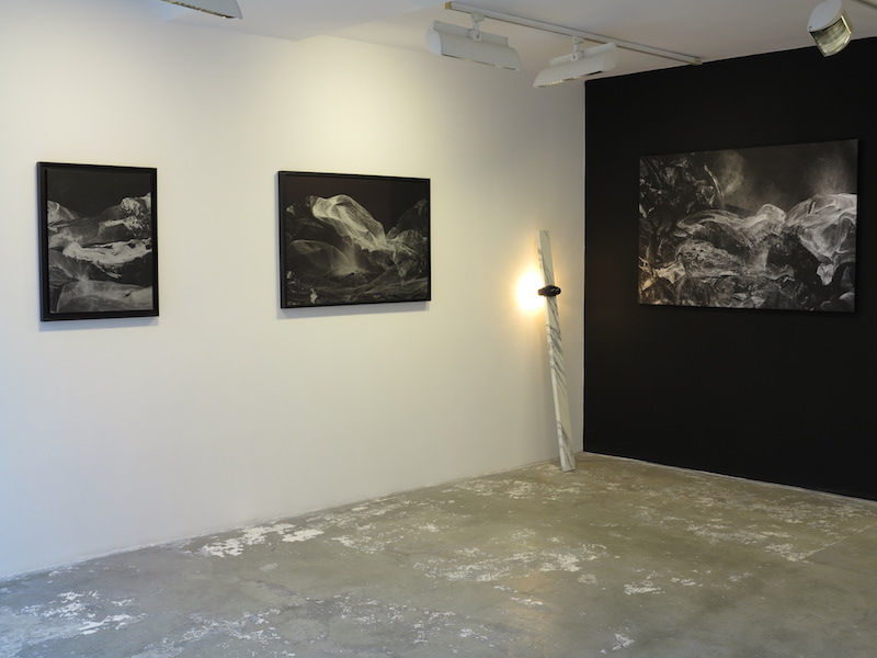 Vue de l'exposition Under the Cherry Moon, galerie Dominique Fiat, Paris 2016