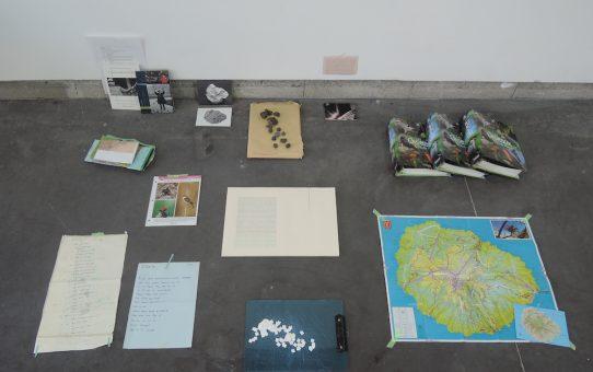 ENTRETIEN - Julie Michel - Résidence Astérides - Point contemporain