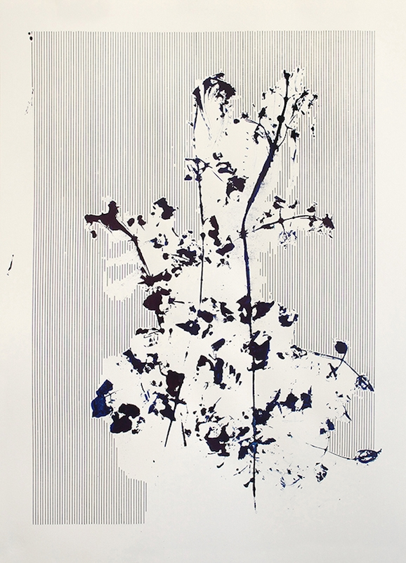 Mauvaises herbes, 2016. Encre industrielle sur papier, 70 x 50 cm © Nicolas Muller