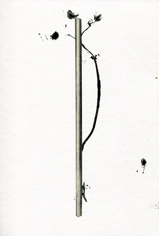Veille, 2016. Encre industrielle et graphite sur papier, 30 x 20 cm © Nicolas Muller