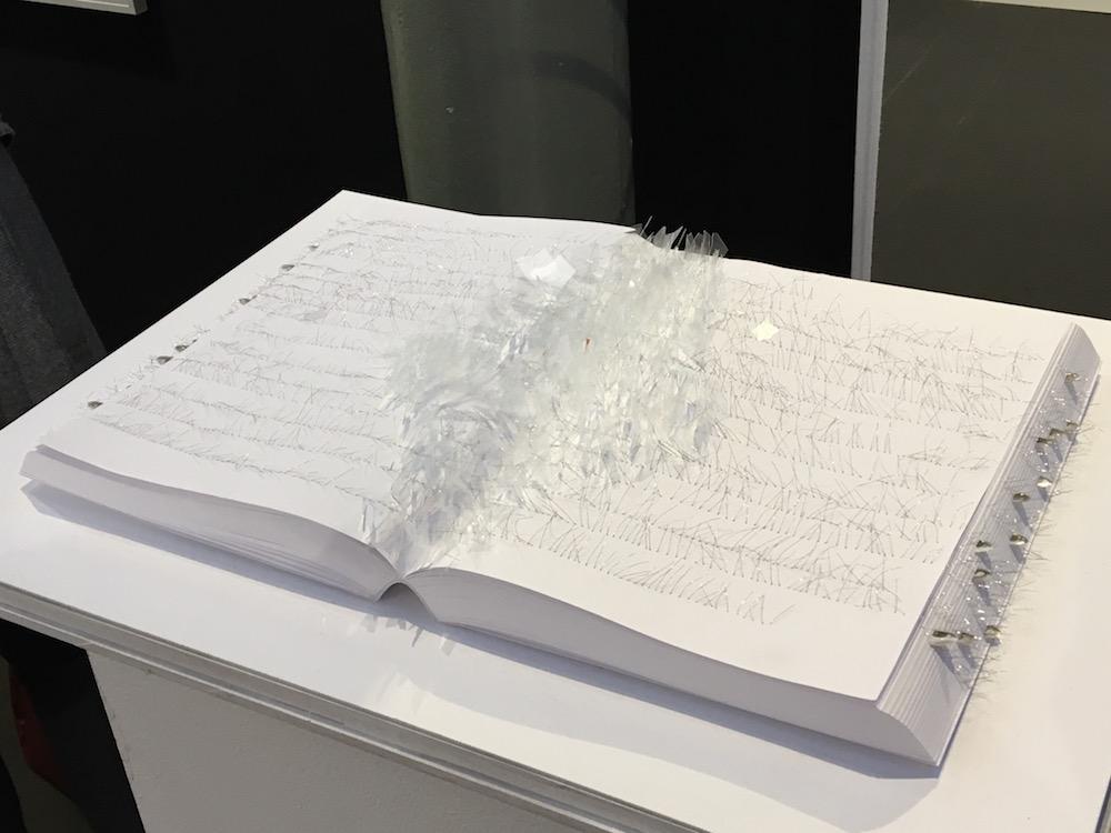 Safâa Erruas (Galerie Dominique Fiat)