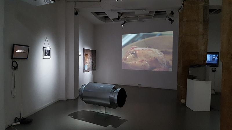 [ENTRETIEN] Théo-Mario Coppola présente le projet curatorial Le Paradis, un peu plus loin