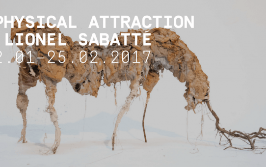 [AGENDA] 12.01→25.02 - Lionel Sabatté - Physical Attraction - Galerie C Neuchâtel