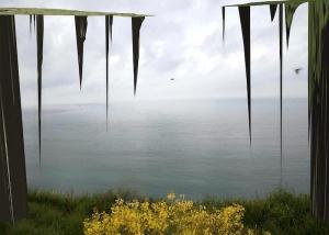 [AGENDA] 14.01→01.04 - Lionel Bayol-Thémines - Silent Mutation - Artothèque Espaces d'art contemporain - Caen