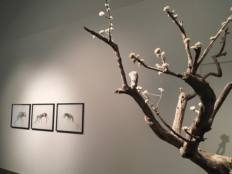 Lionel Sabatté, Physical attraction, Galerie C Neuchâtel. Photo : Point contemporain