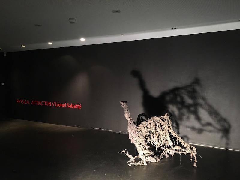 [EN DIRECT] Lionel Sabatté, Physical attraction, Galerie C Neuchâtel