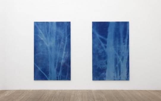 [EN DIRECT] Forêt, une exposition de Philippe Durand à la Galerie Laurent Godin Paris