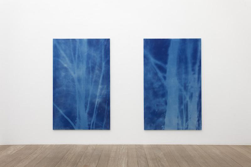 [AGENDA] 07.01→04.03 – Philippe Durand – Forêts – Galerie Laurent Godin Paris