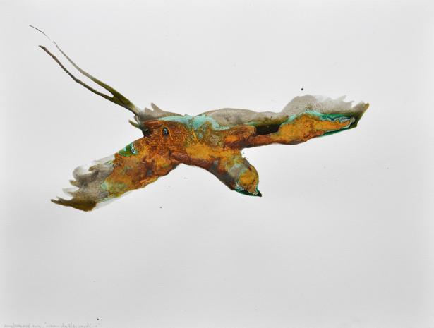 Oiseau des îles oxydé #1– 2014 Solution à base de fer et bronze oxydé sur papier Arches, 46 x 61 cm.