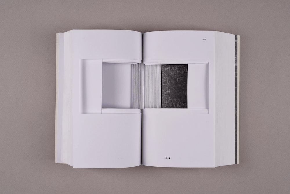 Caroline Reveillaud, TwoPartsWork 1 (Platitude), galerie Florence Loewy Paris