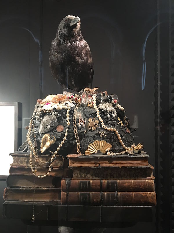 Mark Dion, Museum d'Histoire Naturelle, Palais Longchamp Marseille. Courtesy Mark Dion et Galerie Tanya Bonakdar New York et Galerie IN SITU Paris. Photo : Point contemporain