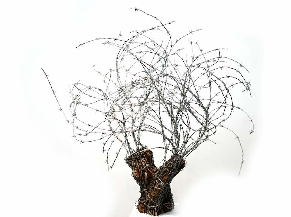 Abdul Rahman Katanani, Arbre 5, 2017. Fils barbelés et bois d'olivier, 120 x 110 x 85 cm. Pièce unique. Courtesy artiste et Galerie Magda Danysz.