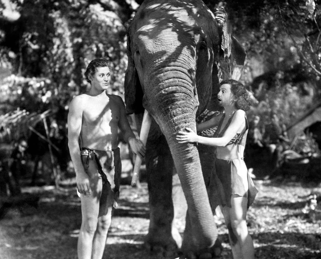 Tarzan & Jane, 2015 © Jacky & Jacky