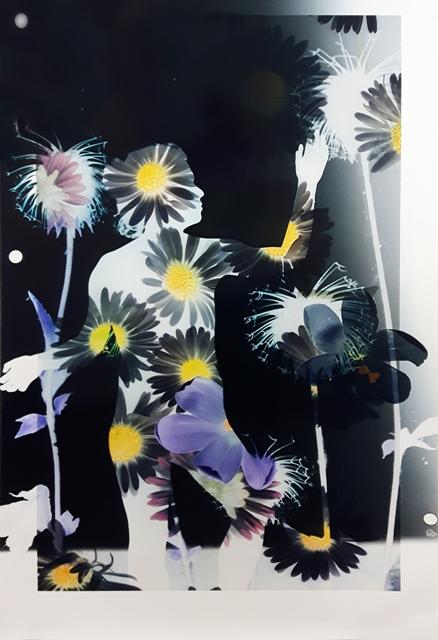 Baptiste Rabichon, 17ème, 2017 Epreuve chromogène unique, 195 x 127 cm