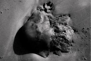 Sandrine Elberg, Poussières Silencieuses, Galerie du CROUS Paris