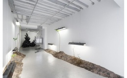B L OB! galerie Bertrand Grimont Paris