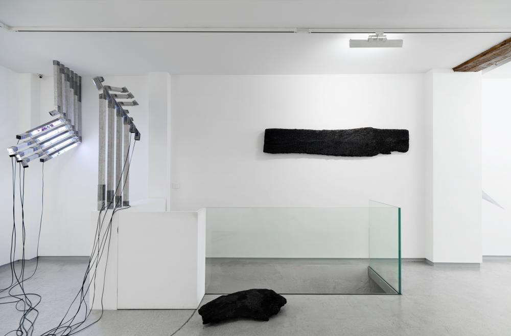 Vue d'exposition BL OB! Galerie Bertrand Grimont Paris.