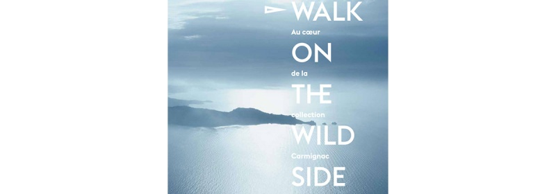 Walk on the wild side : au coeur de la collection Carmignac – Editions Skira