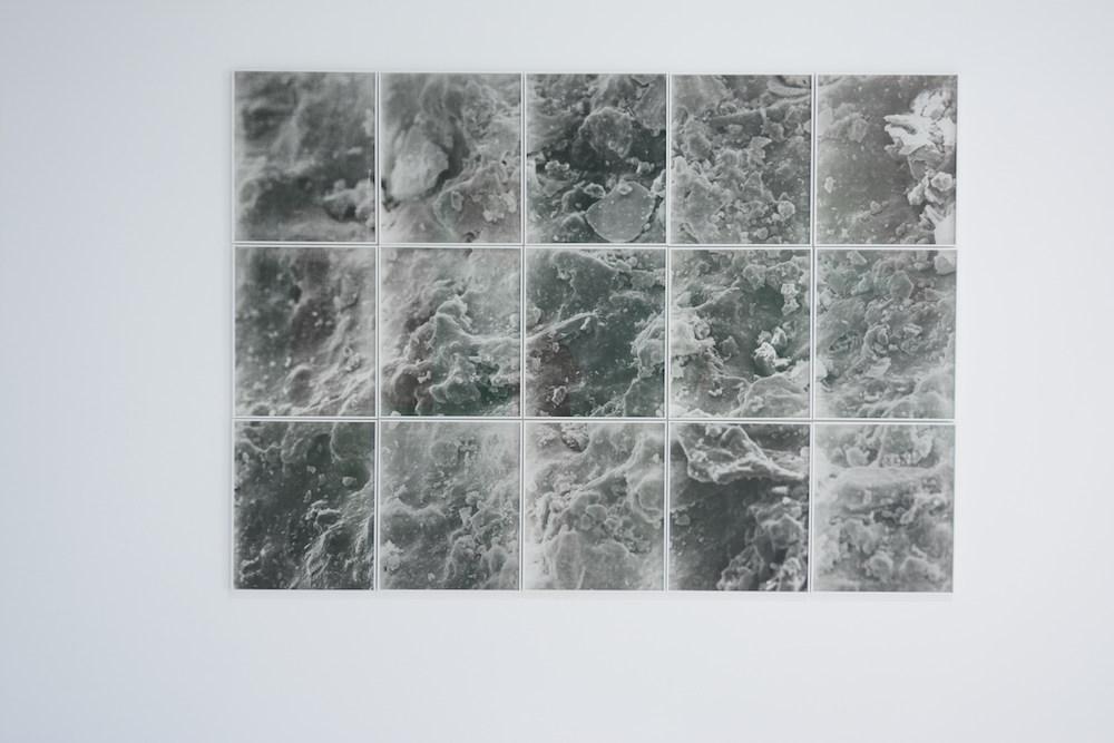 Caroline Corbasson, Field, 2017. Impression charbon sur papier, dimensions variables. Photo : Alain Alquier. Courtesy de l'artiste.