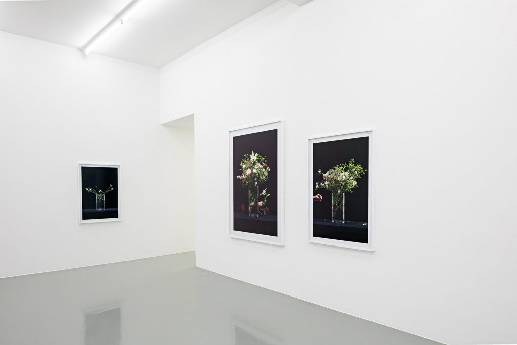 "Martin Beck, ""Flowers (série 1)"", 2015 Courtesy Martin Beck & 47 Canal, New York / Photo : Fred Dott. Vue d'exposition ""Martin Beck. Dans un second temps"" au 49 Nord 6 Est - Frac Lorraine, Metz 06 juillet - 21 octobre 2018 - Photo: Fred Dott"
