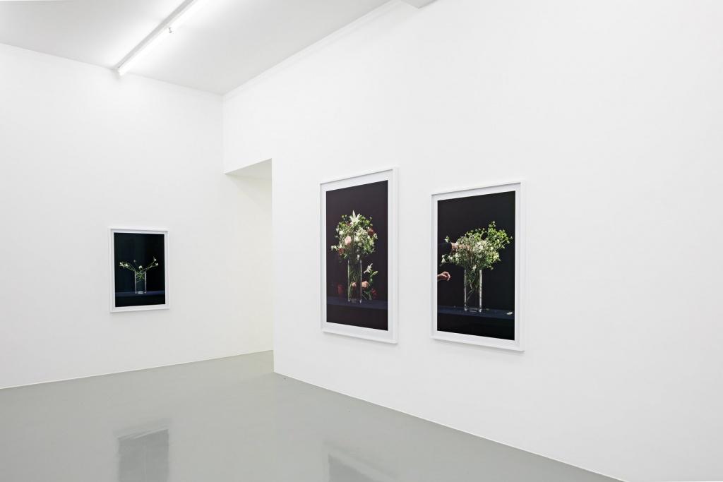 """Martin Beck, """"Flowers (série 1)"""", 2015 Courtesy Martin Beck & 47 Canal, New York / Photo : Fred Dott. Vue d'exposition """"Martin Beck. Dans un second temps"""" au 49 Nord 6 Est - Frac Lorraine, Metz 06 juillet - 21 octobre 2018 - Photo: Fred Dott"""