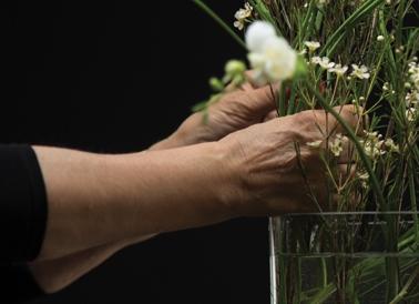 "Martin Beck, ""Flowers (série 1)"", 2015 Courtesy Martin Beck & 47 Canal, New York / Photo : Fred Dott."
