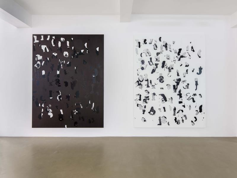 Debris Field/Notes for a Poem on the Third World/Soleil Nègre, Vue d'exposition. Crédits photo : Photo : Florian Kleinefenn, Courtesy of the artist and Galerie Chantal Crousel, Paris