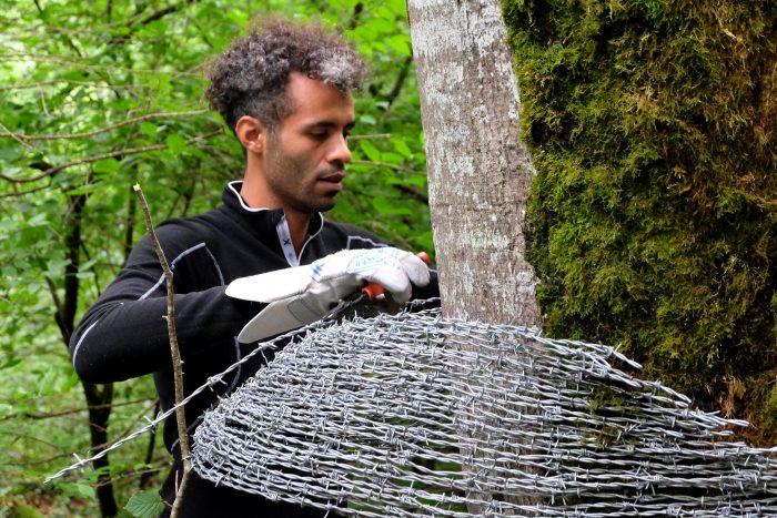 Vent des forêts -  oeuvre 209, Champignons parAbdul Rahman Katanani, 2017