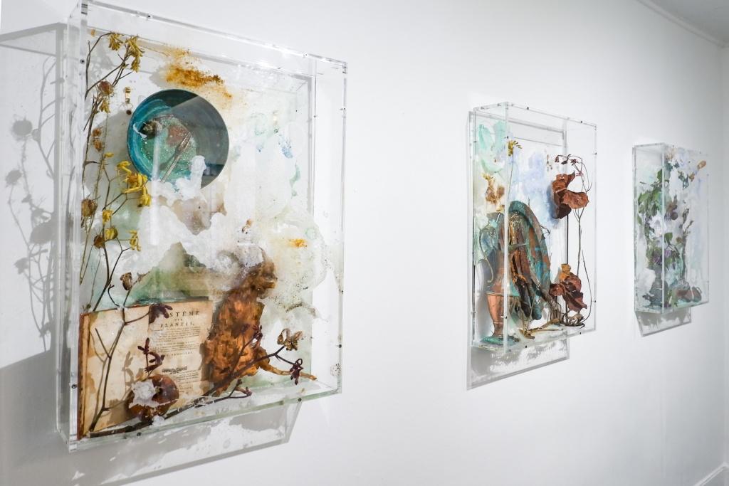 Bianca Bondi, Bloom series, 2018. Vue de l'exposition Diet & Psychology aux Limbes,Saint-Etienne. Crédits : Bianca Bondi - courtesy de l'artiste