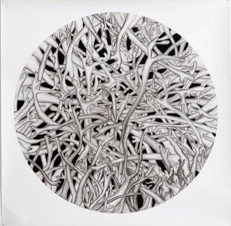 Huan Liu,Sans titre, 2017. Dessin au fusain, 100 x 100 cm.