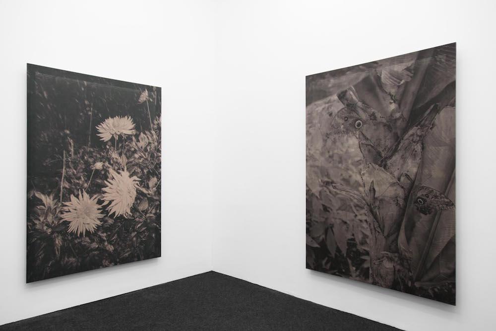 Vue de l'exposition Floriane Michel, Parfois les images se détachent, Coherent, Brussels