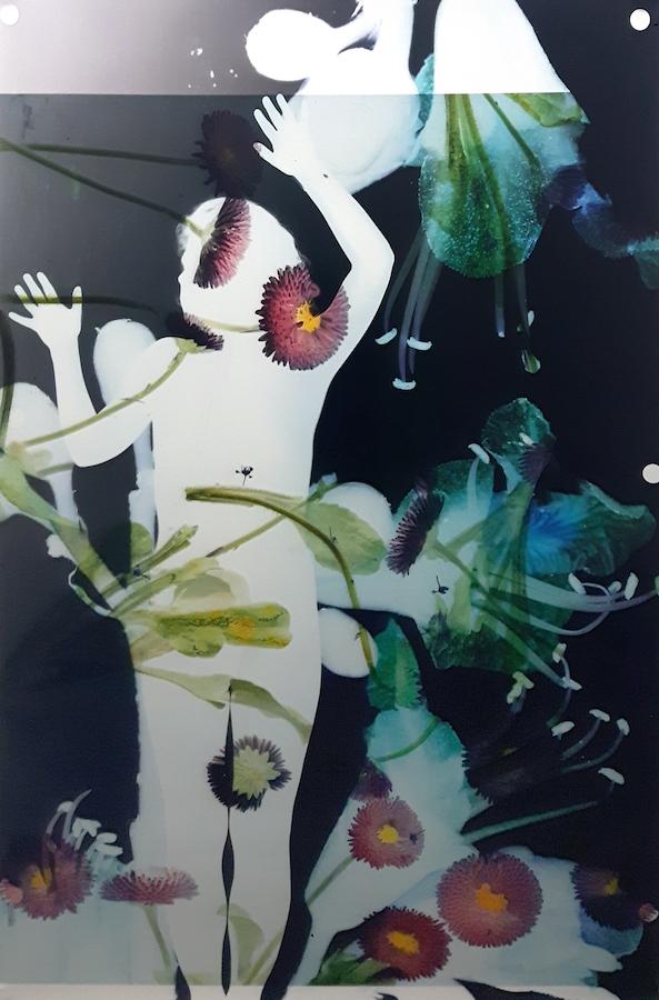 Baptiste Rabichon, 17ème- f, 2017. Epreuves chromogènes unique,195 x 127 cm©Baptiste Rabichon, courtesy Galerie Paris-Beijing