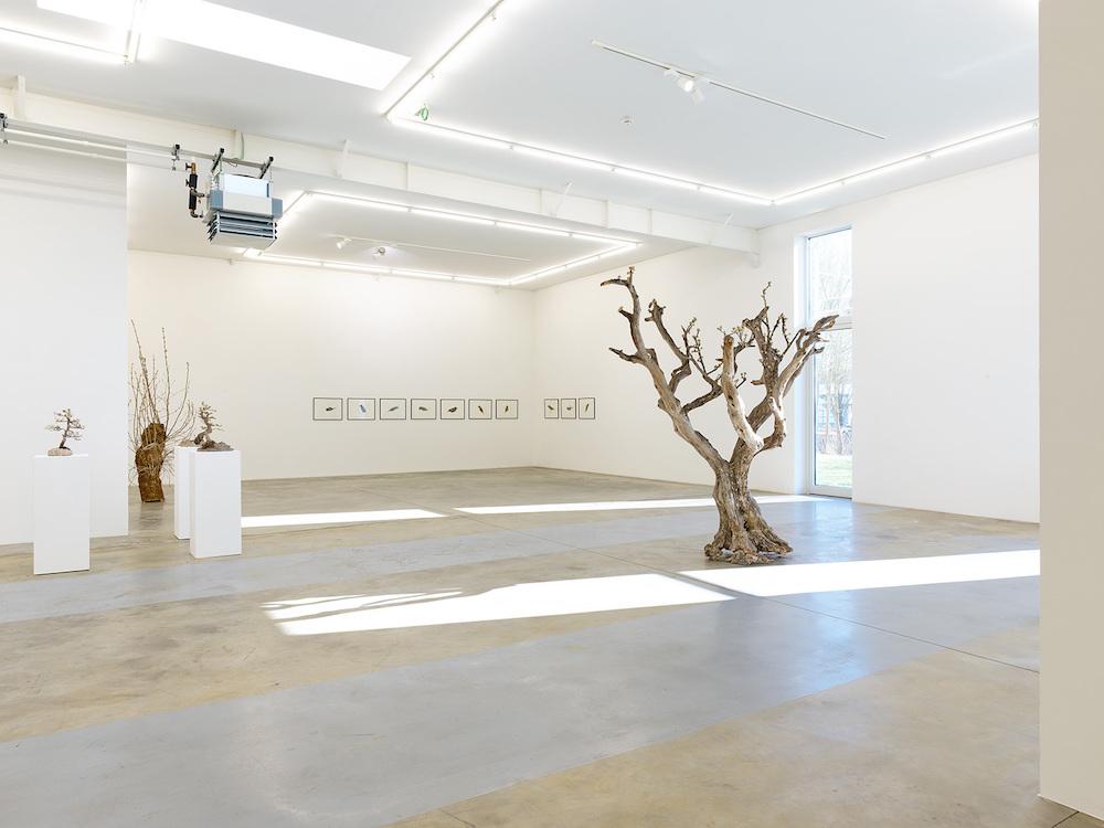 Lionel Sabatté, vue de l'exposition Morphèmes, du 23 février au 27 avril 2019, Galerie Ceysson & Bénétière Luxembourg