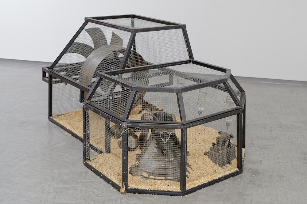 Vue d'exposition Nelson Pernisco, Si par parking vous comprenez jardin Photo Galerie Bertrand Grimont Paris
