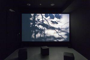 Edouard Sautai, Still life, 2019Vidéo, 15 minutes