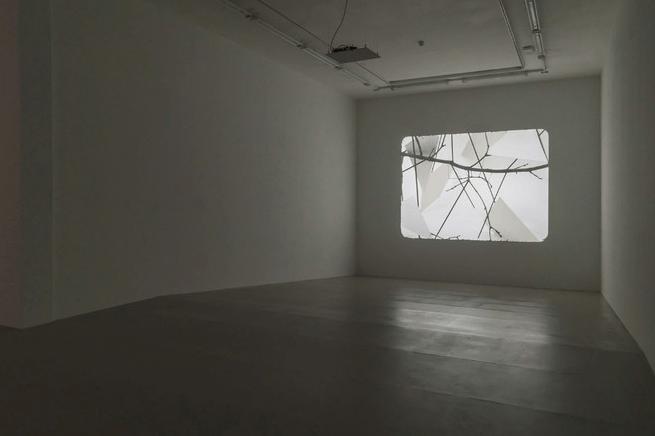 Vue de l'exposition Daniel Steegmann Mangrané, Ne voulais prendre ni forme, ni chair, ni matière, du 20 février au 28 avril 2019 à l'Institut d'art contemporain © Teresa Estrada Ferrando