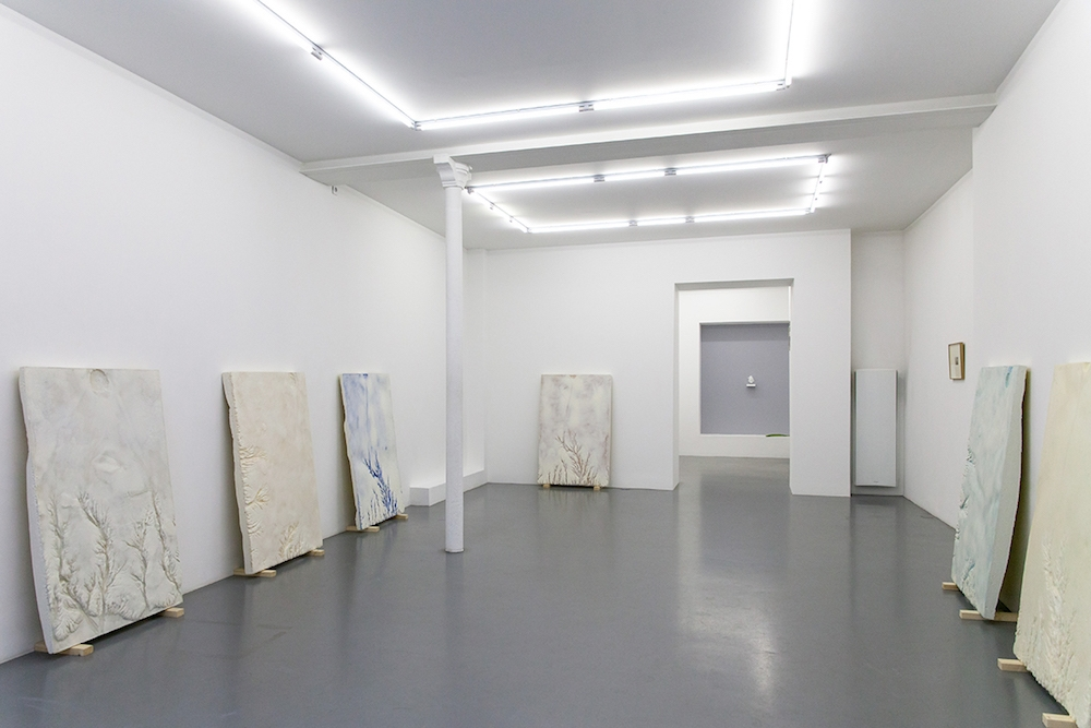 Solo Show de Julien Discrit à la Galerie Anne-Sarah Bennichou, The Discreet and the Continuous, 2018