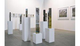 Morgane Denzler, Beyond Landscape